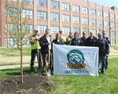 Villa Park has been named a Tree City USA 30 years in a row.