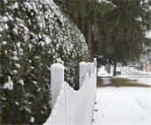 Fence and Snow