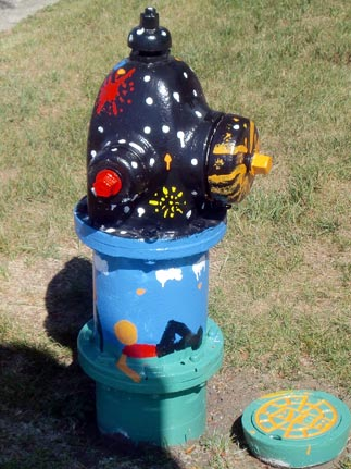 Fireworks - St. Charles and Yale (2)