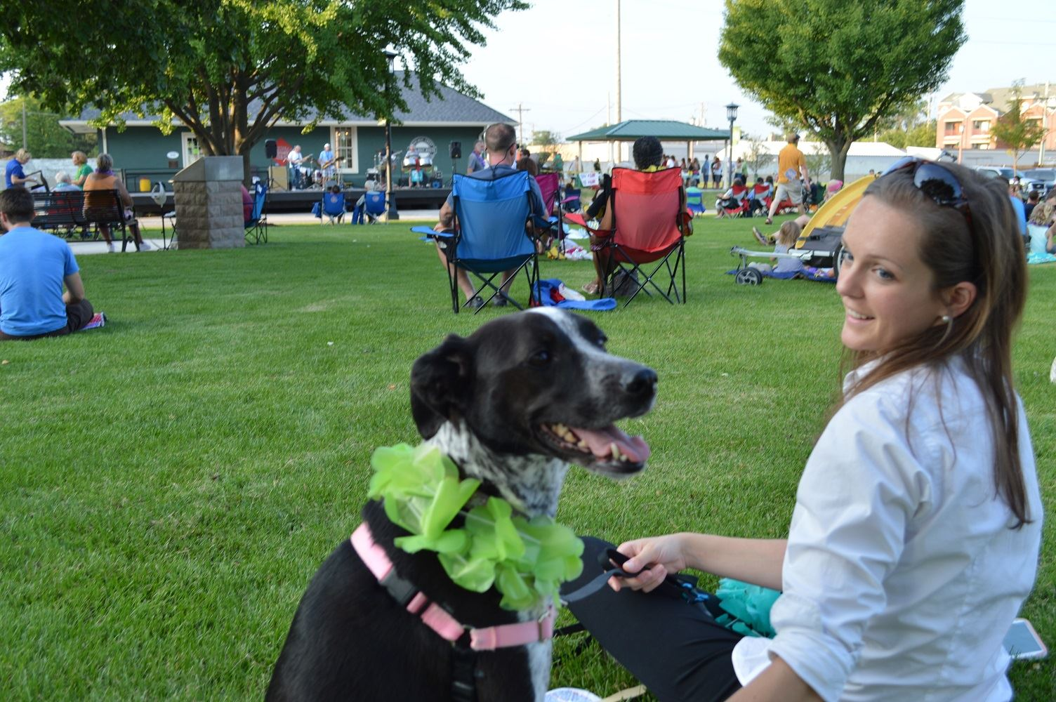 A dog sits with a flower lei at a Mr. Meyers concert at Cortesi Veterans Memorial Park on Aug. 4, 2016.
