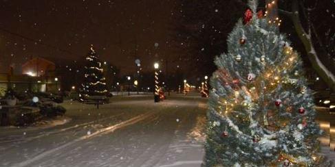 christmas tree recycling jan 8 18 2018 tree lights